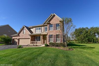 Elgin Single Family Home For Sale: 3831 Trillium Trail