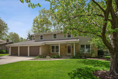 Northbrook Single Family Home For Sale: 1716 Longvalley Drive