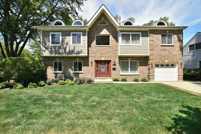 Deerfield Single Family Home For Sale: 1130 Osterman Avenue