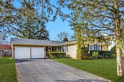 Buffalo Grove Single Family Home For Sale: 421 Arborgate Lane