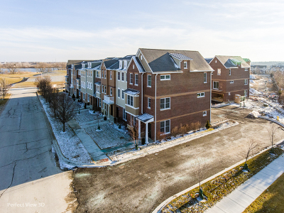 Orland Park Condo/Townhouse For Sale: 10618 Alice Mae Court