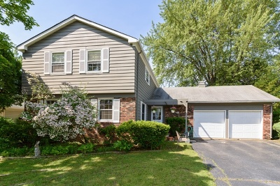 Buffalo Grove Single Family Home For Sale: 931 Shady Grove Lane