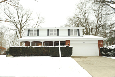 Palatine Single Family Home New: 458 South Burno Drive