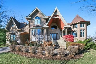 Burr Ridge Single Family Home For Sale: 8s160 South Vine Street