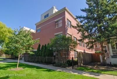 Oak Park Condo/Townhouse For Sale: 100 South Elmwood Avenue #6