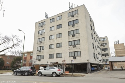 Condo/Townhouse New: 7540 North Ridge Boulevard #4B