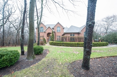 Spring Grove IL Single Family Home Contingent: $399,000