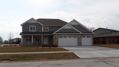 Mokena Single Family Home For Sale: 10711 Crystal Creek Drive