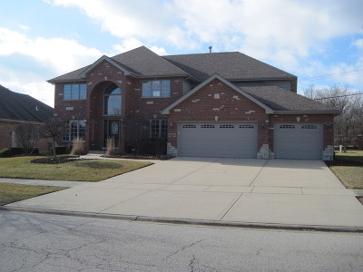 Mokena Single Family Home For Sale: 19900 Berkshire Drive