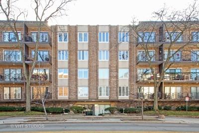 Morton Grove Condo/Townhouse For Sale: 5501 Lincoln Avenue #206
