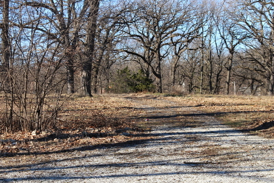 Palos Park Residential Lots & Land For Sale: 7950 West 127th Street