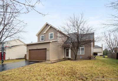 North Aurora Single Family Home For Sale: 319 Magnolia Drive