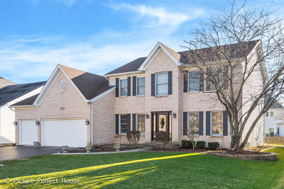 Naperville Single Family Home For Sale: 2620 Hoddam Road