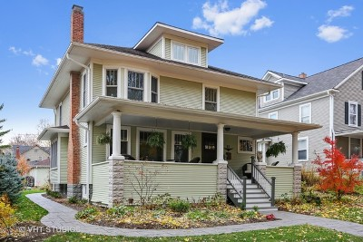 Naperville Single Family Home For Sale: 21 South Columbia Street