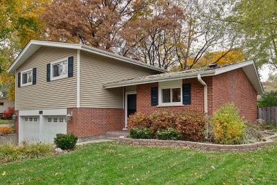 Arlington Heights Single Family Home For Sale: 1304 East Eastman Street