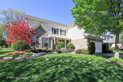 Grayslake Single Family Home For Sale: 34008 North Wooded Glen Drive