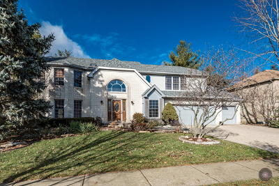 Naperville Single Family Home For Sale: 411 Knoch Knolls Road
