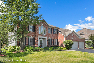 Single Family Home For Sale: 3539 Sweet Maggie Lane