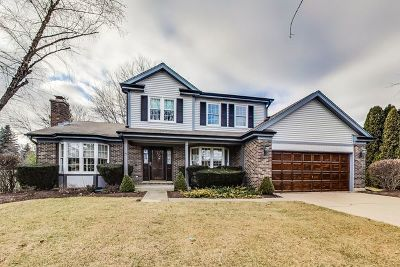 Libertyville Single Family Home For Sale: 1309 Annie Lane