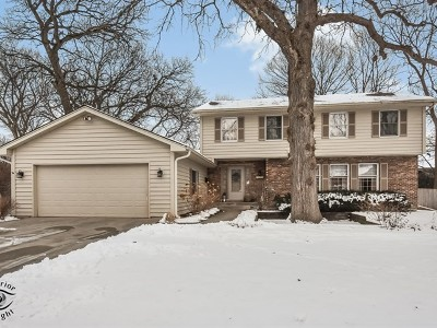 Kane County Single Family Home New: 1870 Allen Lane