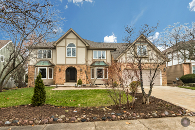Naperville Single Family Home For Sale: 677 Chippewa Drive