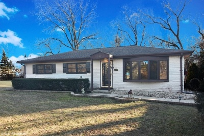 Palatine Single Family Home For Sale: 247 West Michigan Avenue