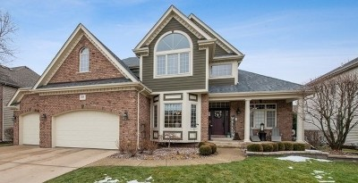Naperville Single Family Home For Sale: 3520 Vanilla Grass Drive