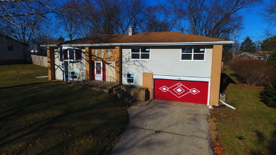 McHenry Single Family Home For Sale: 3202 West Skyway Drive