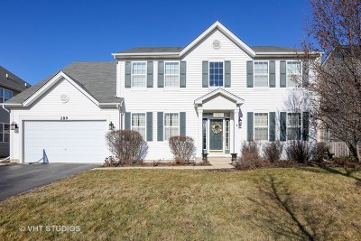Oswego Single Family Home For Sale: 289 Bluegrass Parkway