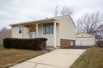 Romeoville Single Family Home For Sale: 226 Karen Avenue