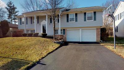 Buffalo Grove Single Family Home For Sale: 970 Alden Lane