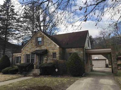 Ogle County Single Family Home For Sale: 602 North 6th Street