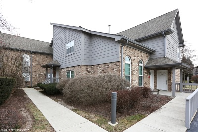 Naperville Rental For Rent: 15 Foxcroft Road #207