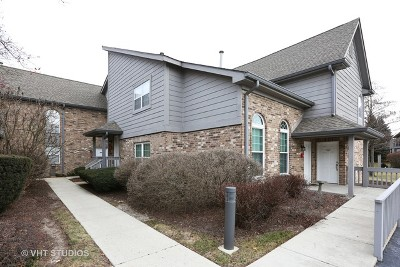 Naperville Condo/Townhouse For Sale: 15 Foxcroft Road #207
