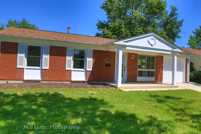 Streamwood Single Family Home For Sale: 601 Newberry Drive