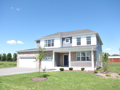 Plainfield Single Family Home New: 13500 South Carmel Boulevard