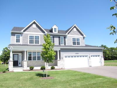 Plainfield Single Family Home For Sale: 13540 South Carmel Boulevard