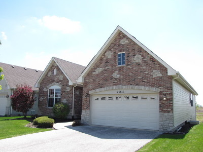 Plainfield Single Family Home New: 13625 Palmetto Drive
