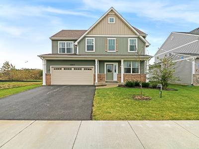 Plainfield Single Family Home New: 13613 Palmetto Drive