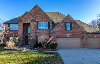 Naperville Single Family Home For Sale: 308 Senna Court