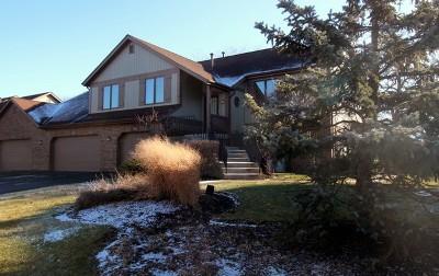 Palos Heights Condo/Townhouse For Sale: 7921 Oak Knoll Lane #7921