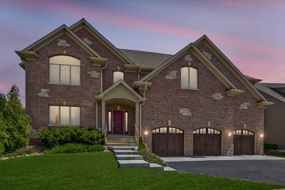 Wauconda Single Family Home For Sale: 860 Peninsula Drive