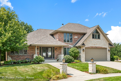 Naperville Single Family Home For Sale: 712 Lindholm Court