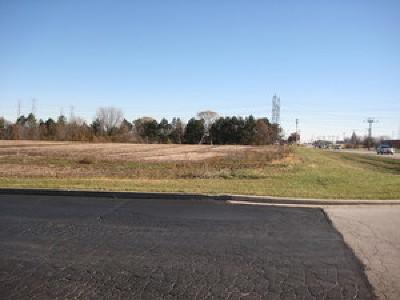 Homer Glen Residential Lots & Land For Sale: 13152 West 143rd Street