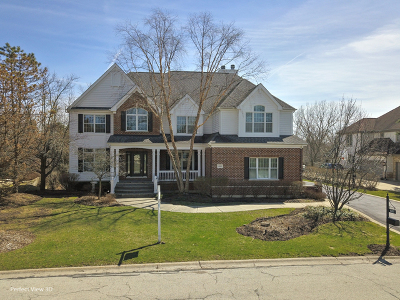 Palatine Single Family Home For Sale: 1083 South Windhill Drive