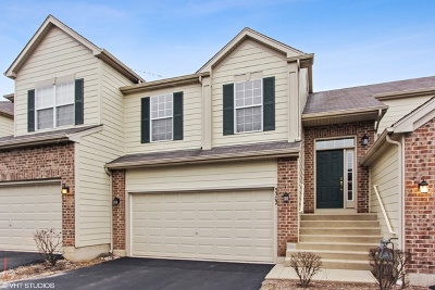 McHenry Condo/Townhouse New: 5302 Cobblers Crossing
