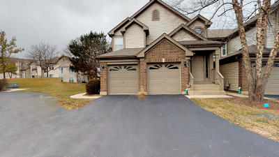 Buffalo Grove Condo/Townhouse New: 151 Old Oak Drive #151