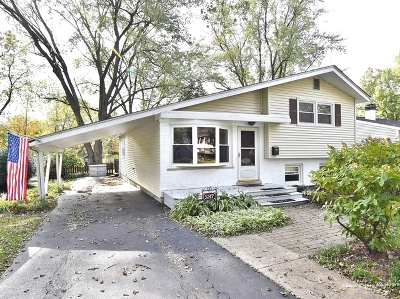 Glen Ellyn Single Family Home New: 587 Lowden Avenue