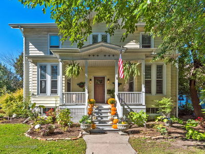La Grange Single Family Home For Sale: 16 7th Avenue