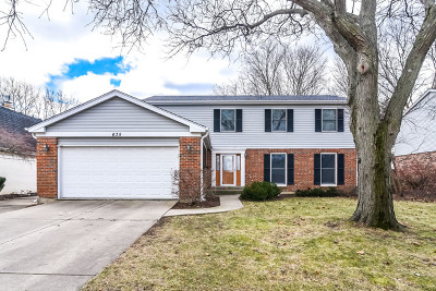 Palatine Single Family Home For Sale: 635 East Cunningham Drive